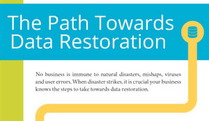 What You Need to Know about Data Restoration [INFOGRAPHIC]