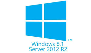 NovaBACKUP and Windows 8.1 / Server 2012 R2 (It Works!)